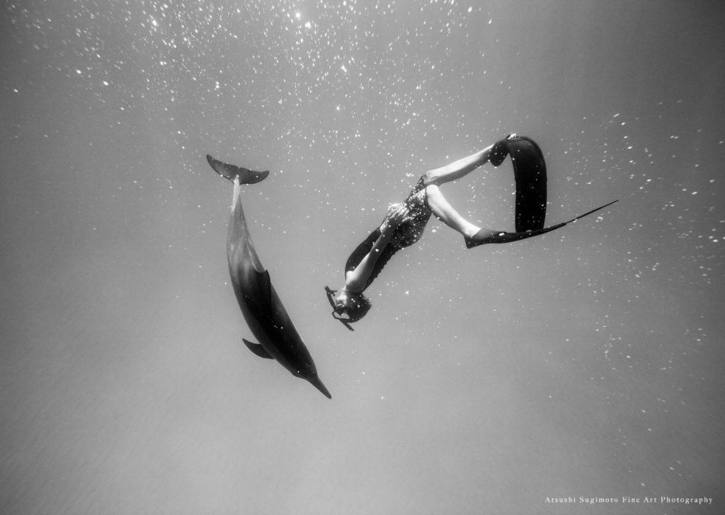 Dolphin Eyes Daisuke