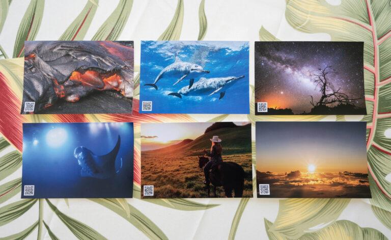 絶景動画付きポストカードを先着100名様にプレゼント